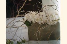 Fotos de Juan Cereto Diseño Floral
